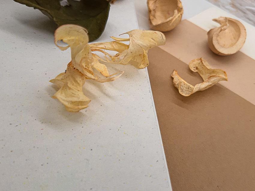 carta ecologica riciclata partecipazioni - le cartasie